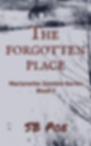 The Forgotten Place.jpg