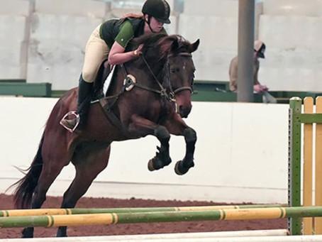 Horses make me feel better