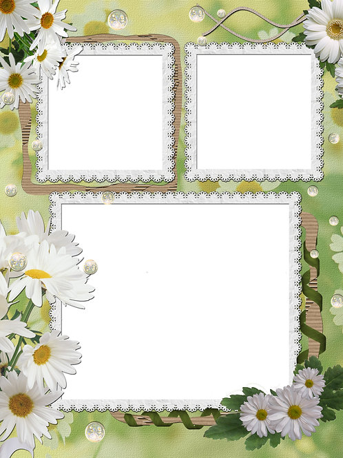 White Daisies and Vines - As low as $0.99 each