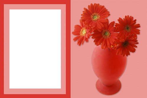 Red Daisies - As low as $0.99 each