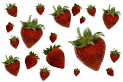 Strawberry Background III