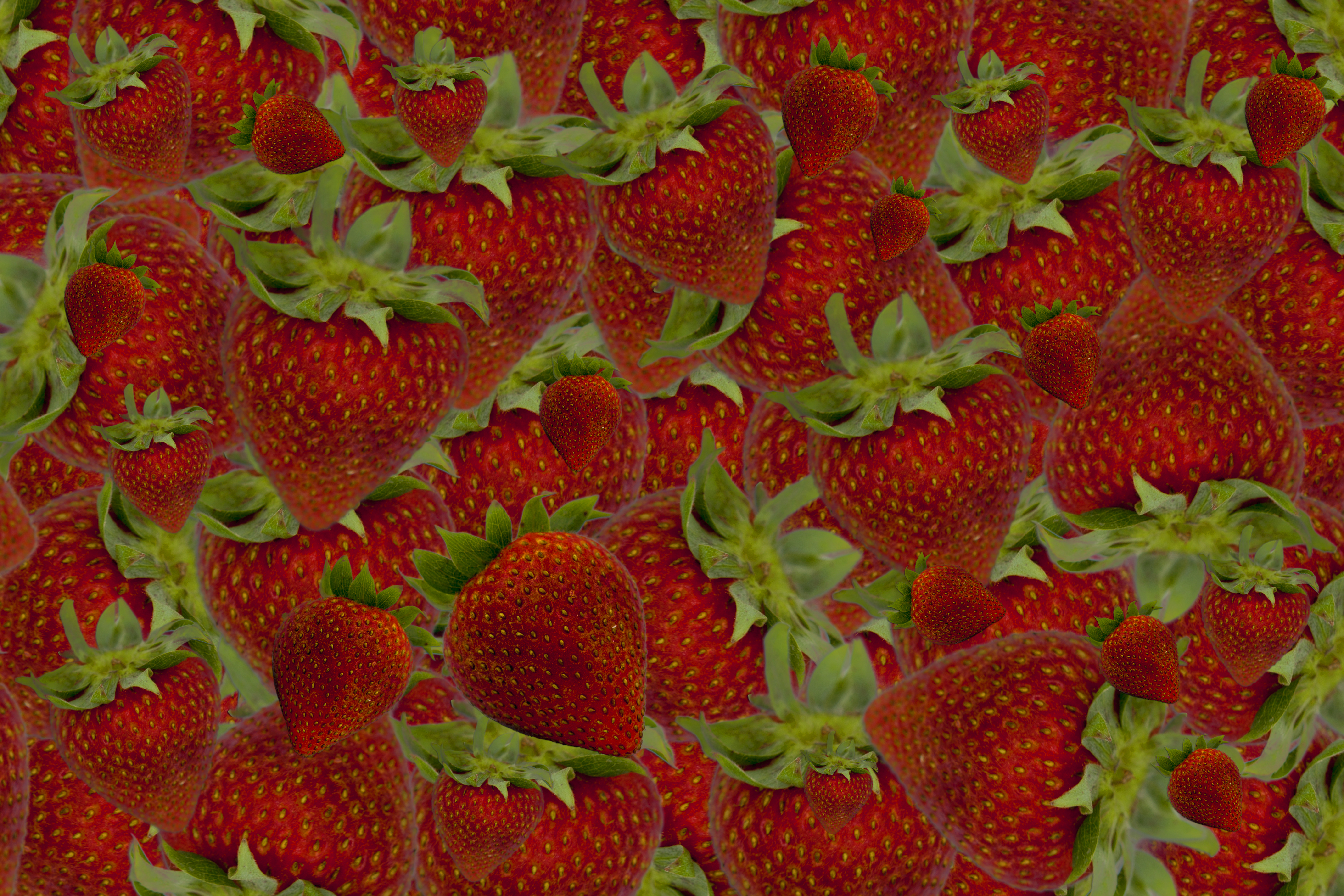 Strawberry Background IV