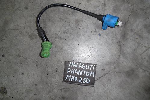 BOBINA USATA COMPLETA MALAGUTI PHANTOM MAX 250cc