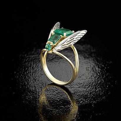 fly_ring.jpg