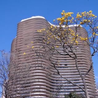 Cinco edifícios para morar em Belo Horizonte