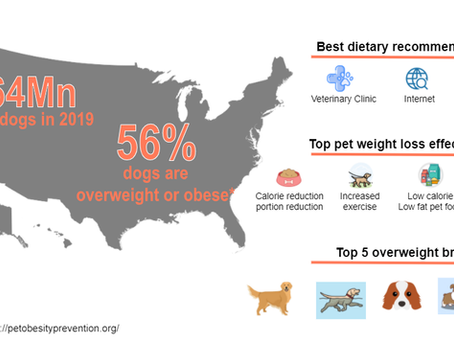Fat dogs of the US: Dog obesity an epidemic