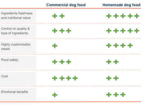 Why homemade dog food is best for your pooch?