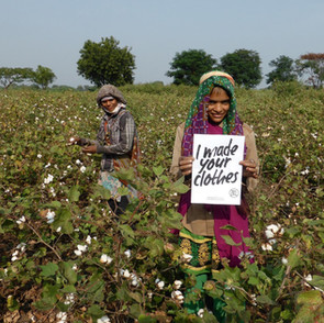 20170424_cottonfarmer_news_featured.jpg