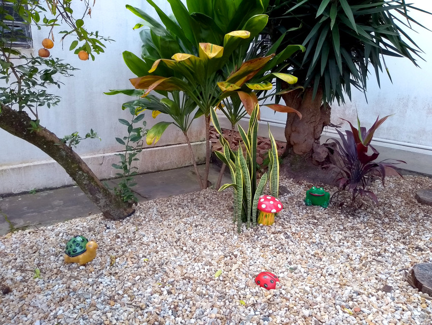 área externa - jardim (1).jpg
