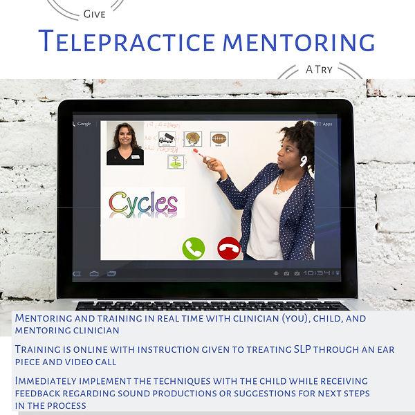telepractice mentoring graphic.jpg
