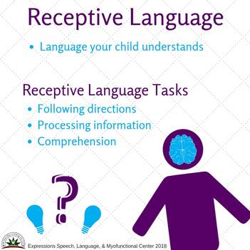 Receptive Language.jpg