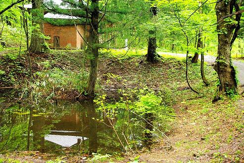 2010-5-21~25観察園 094a.jpg