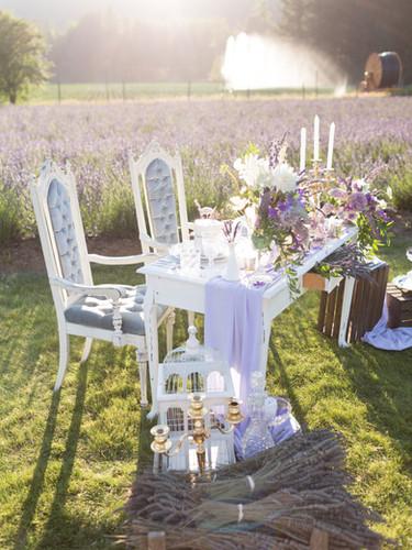 LavenderField9.jpg