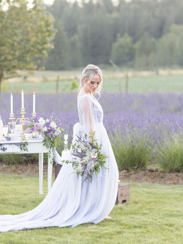 LavenderField5.jpg