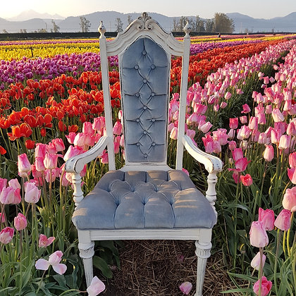 Alice Chairs