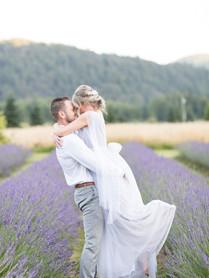 LavenderField7.jpg