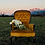Thumbnail: Holly Chairs (2)