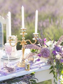 LavenderField10.jpg