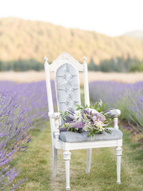 LavenderField6.jpg