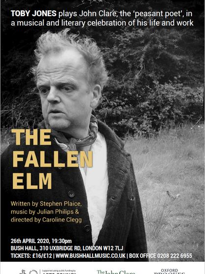 The Fallen Elm