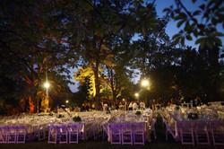 חתונה 54