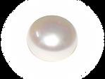 Pearl Visual.png