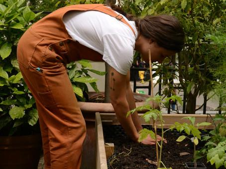 Emma, l'art de jardiner pour les autres
