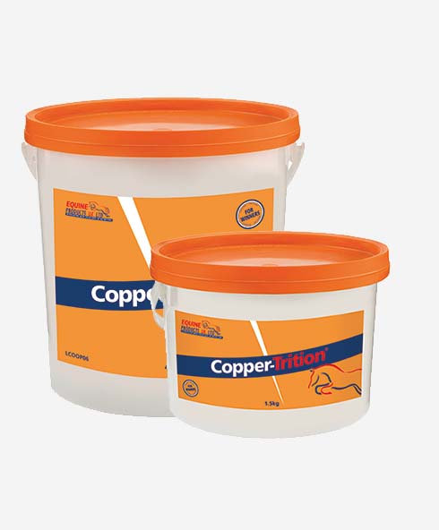 Equine Products, Copper-Trition