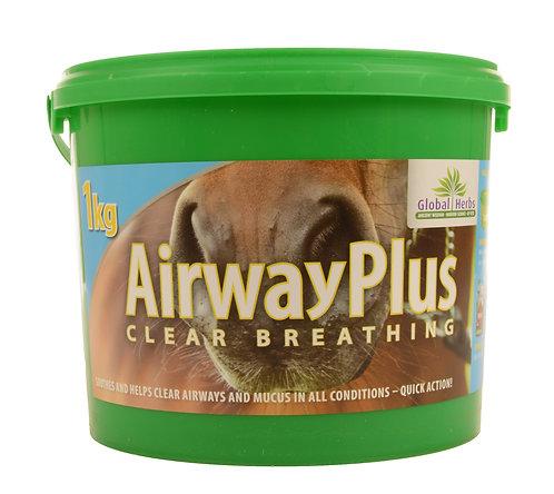 Global Herbs, AirwayPlus
