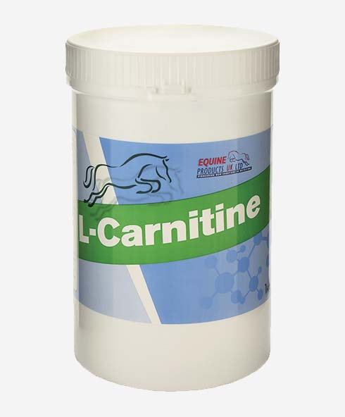 Equine Products, L-Carnitine