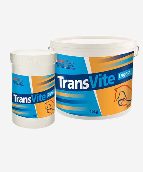 Equine Products, Transvite Digest