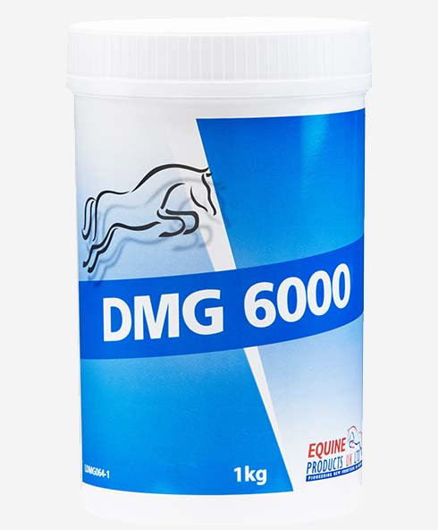 Equine Products, DMG 6000