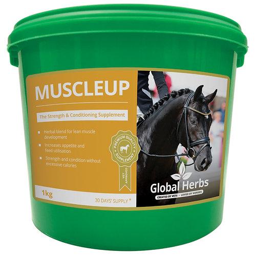 Global Herbs, MuscleUp