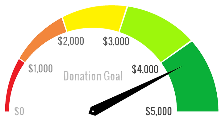 A semi-circle gauge named Donation Goal with a pointer at $4,136. The gauge is broken into five sections. The first section begins at $0 and is red. The second section begins at $1000 and is orange. The third section begins at $2000 and is yellow. The fourth section begins at $3000 and is lime green. The fifth section begins at $4000 and is green. The gauge maximum is set at $5000