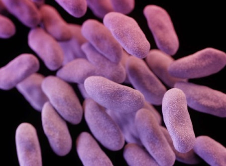 Completely Drug-Resistant Superbug