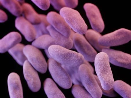 Completely Drug-Resistant Superbug