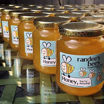 #honey you're amazing! #honeybee #bee #b