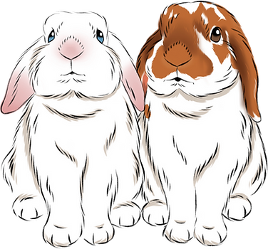 the-bunies_edited.png