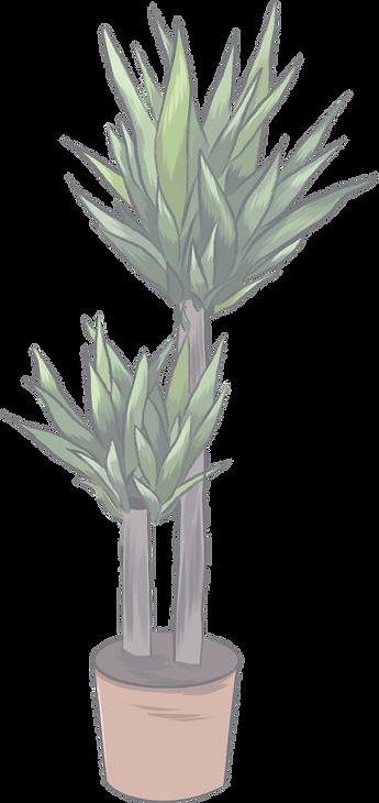 big-plant_edited_edited_edited.png