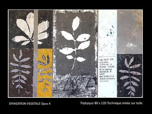 Divagation végétale Opus 4