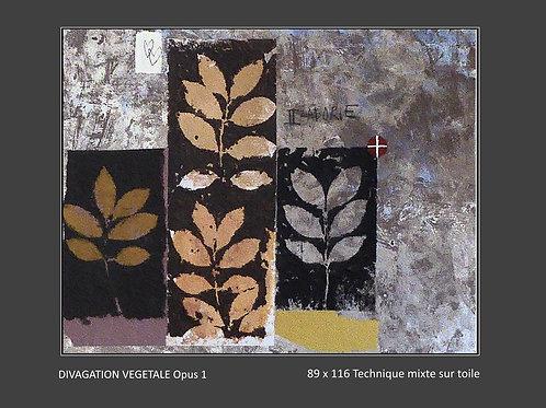 Divagation végétale Opus 1