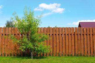 wooden fence garden.jpg