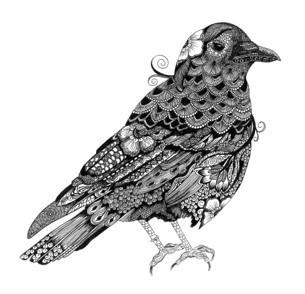 Zen Crow - DHS