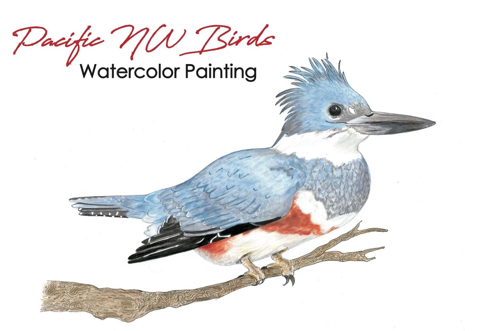 PNW Birds Watercolor Mixed Media book