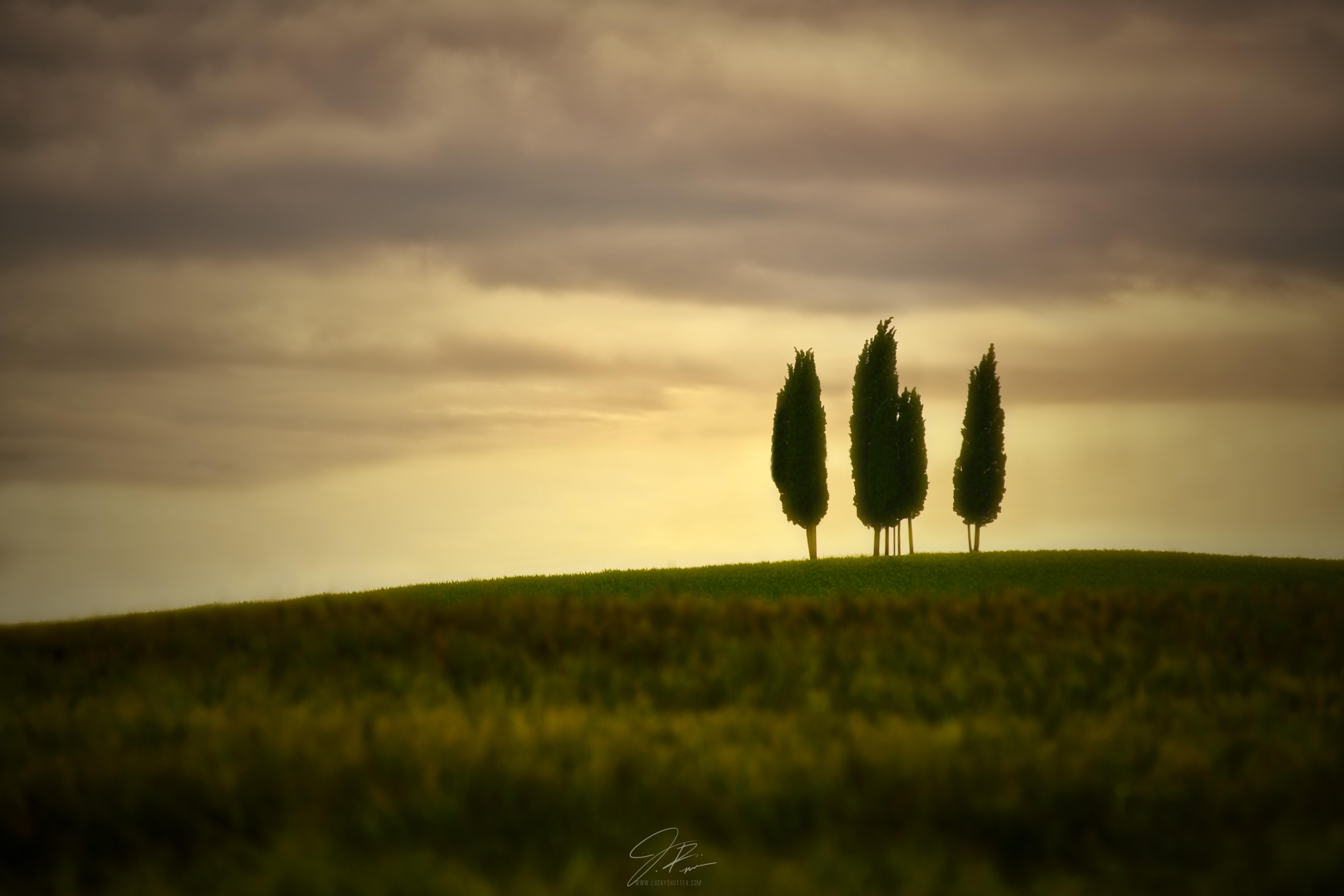 Toscana sunrise#2