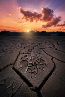Mud Crack Playa - Death Valley, CA