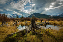Fall in Banff, Alberta