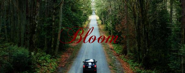 Bloom.960x380px - Dawson Doupé.png