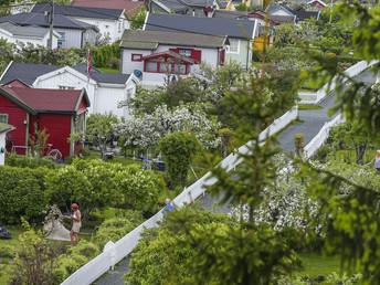 Hva med å gjøre kolonihagene om til boligtomter?