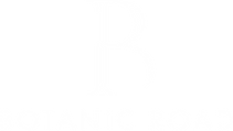 BR logow.png